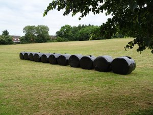 Shaw Ridge bales.jpg